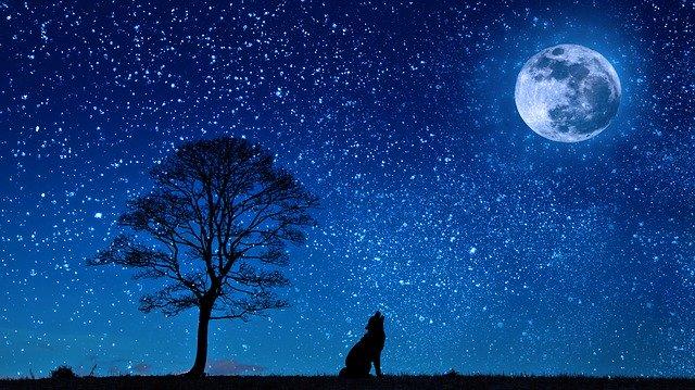 звездное небо и луна