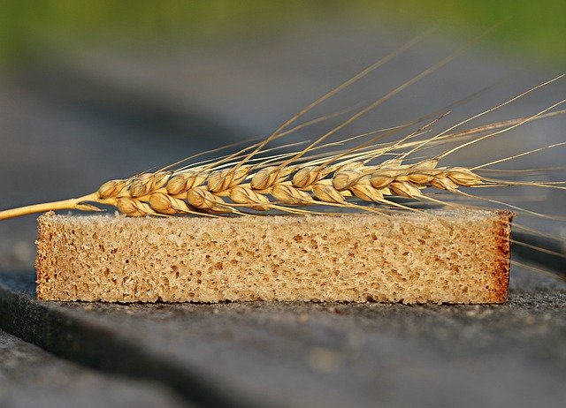 хлеб и колосок пшеницы