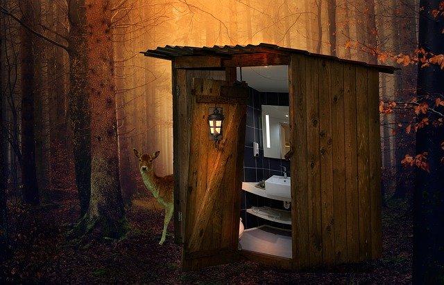 ночной туалет в лесу